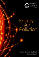World Energy Outlook 2007: China and India Insights